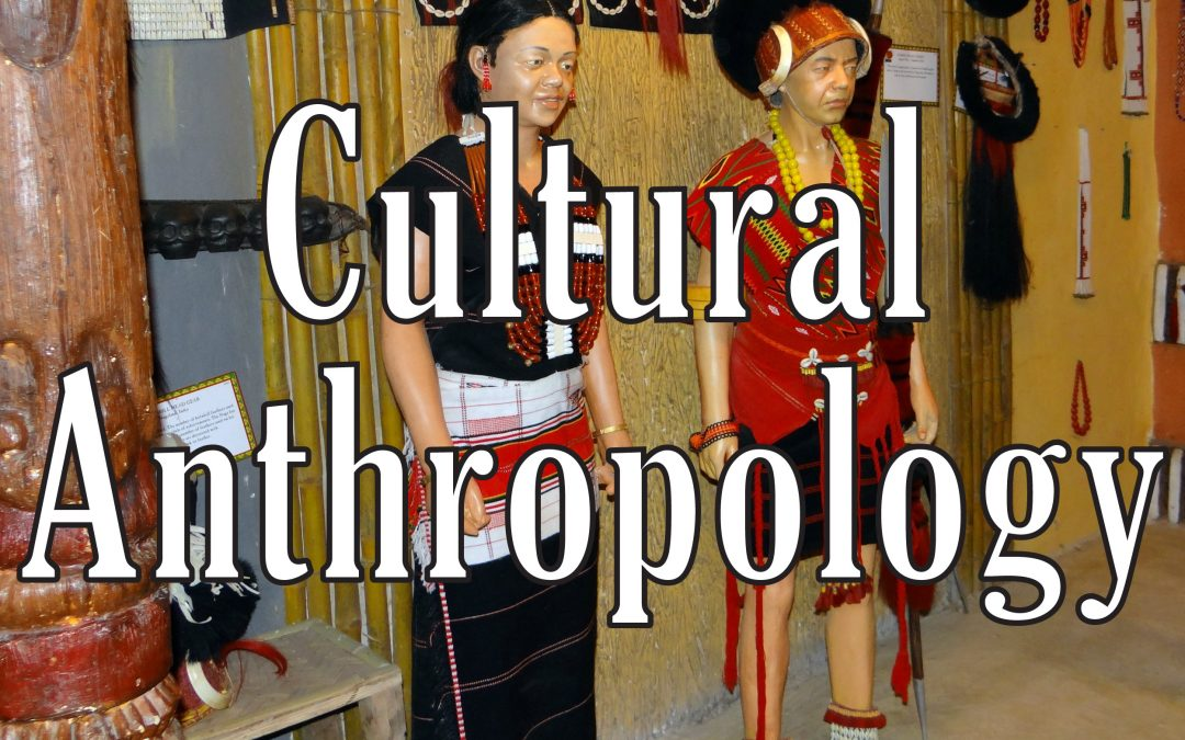 Cultural Anthropology: New Live Streaming Course